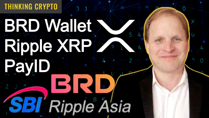 Ripple XRP & ODL Adoption & PayID – CEO of BRD Wallet & SBI Ripple Asia Adam Traidman Interview